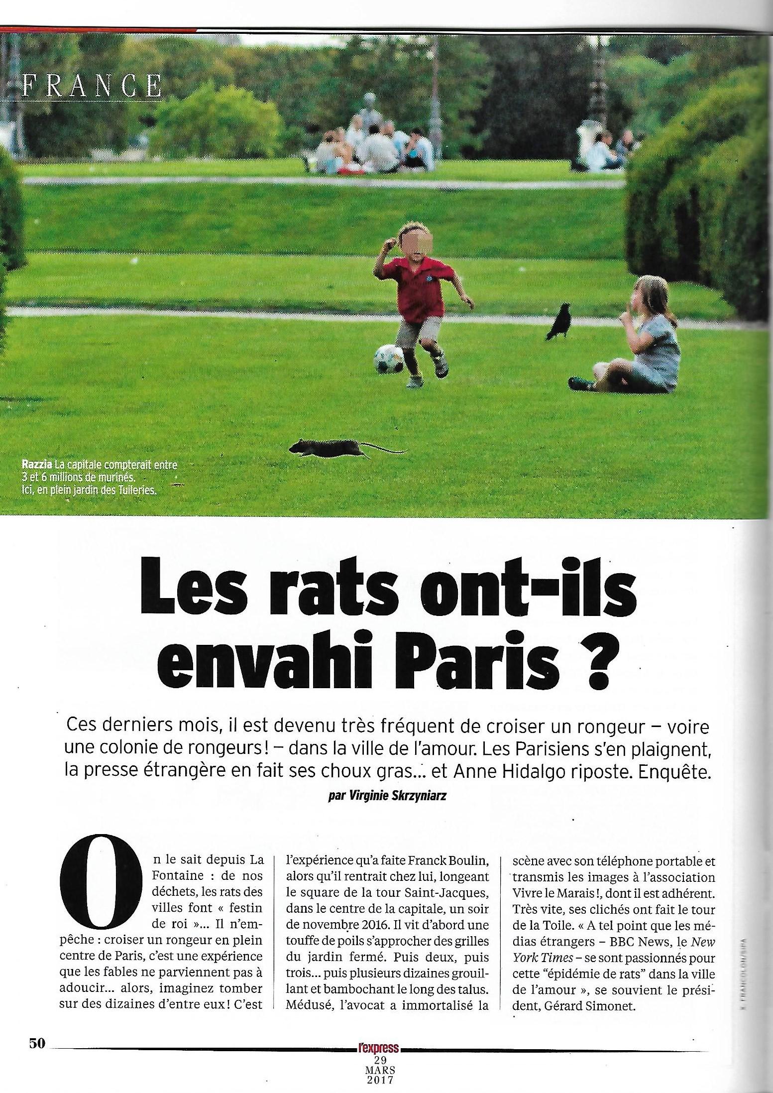 Invasions de rats à Paris – Article de l'Express