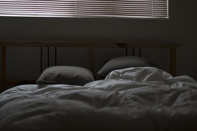 Propagation des punaises de lit