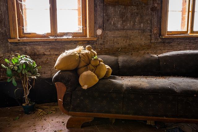 Punaises de lit : identifier les zones infestées par les punaises de lit
