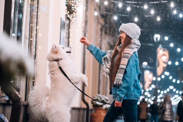 Les loisirs actifs avec son chien: questions de principes